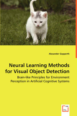Neural Learning Methods for Visual Object Detection - Brain-Like Principles for Environment Perception in Artificial Cognitive Systems
