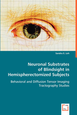 Neuronal Substrates of Blindsight in Hemispherectomized Subjects
