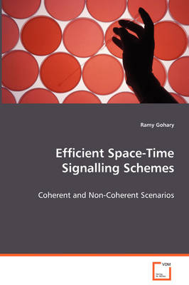 Efficient Space-Time Signalling Schemes