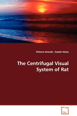 The Centrifugal Visual System of Rat
