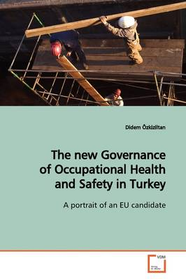 The New Governance of Occupational Health and Safety in Turkey