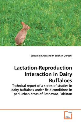 Lactation-Reproduction Interaction in Dairy Buffaloes