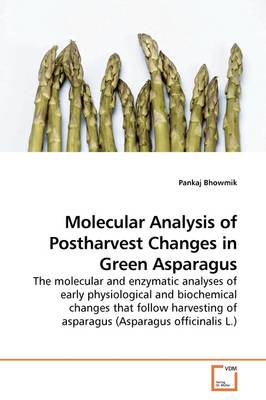 Molecular Analysis of Postharvest Changes in Green Asparagus