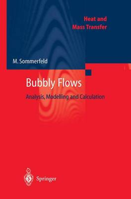 Bubbly Flows: Analysis, Modelling and Calculation