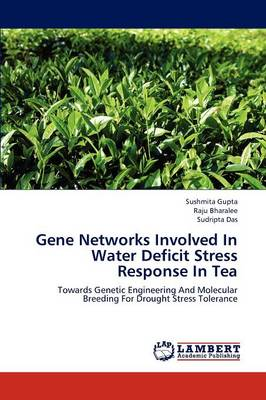 Gene Networks Involved in Water Deficit Stress Response in Tea