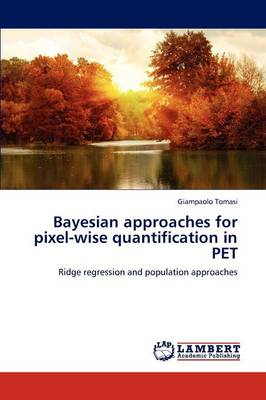Bayesian Approaches for Pixel-Wise Quantification in Pet