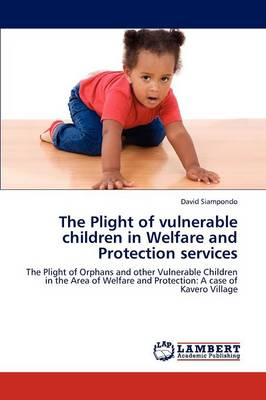 The Plight of Vulnerable Children in Welfare and Protection Services