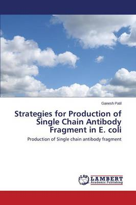 Strategies for Production of Single Chain Antibody Fragment in E. Coli