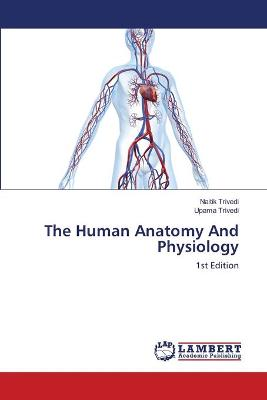 The Human Anatomy and Physiology