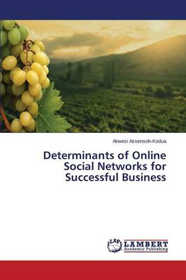 Determinants of Online Social Networks for Successful Business