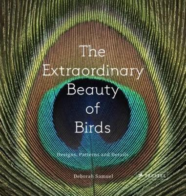 The Extraordinary Beauty of Birds: Designs, Patterns and Details