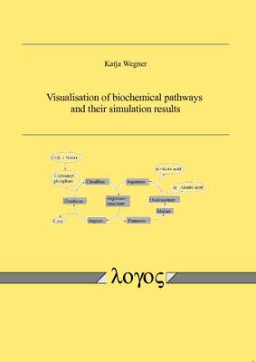 Visualisation of Biochemical Pathways and Their Simulation Results