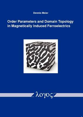 Order Parameters and Domain Topology in Magnetically Induced Ferroelectrics