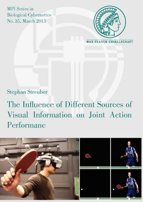 the Influence of Different Sources of Visual Information on Joint Action Performance