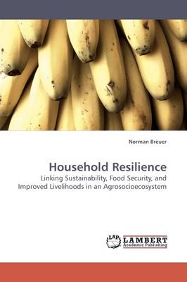 Household Resilience