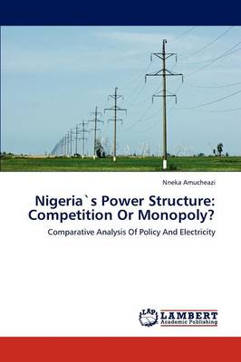 Nigerias Power Structure: Competition or Monopoly?