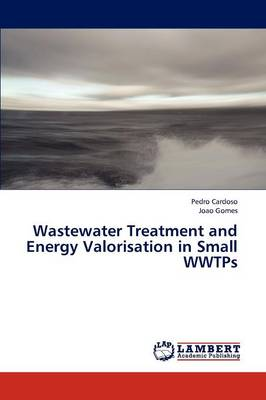 Wastewater Treatment and Energy Valorisation in Small Wwtps