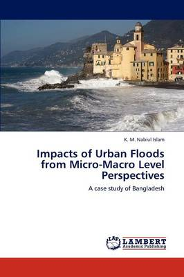 Impacts of Urban Floods from Micro-Macro Level Perspectives