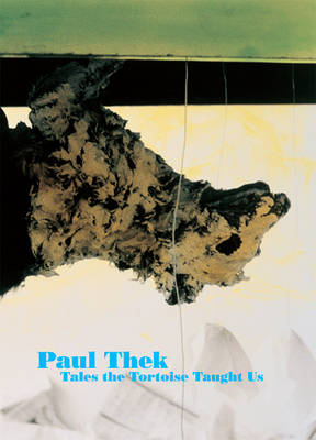 Paul Thek: What the Tortoise Taught Us