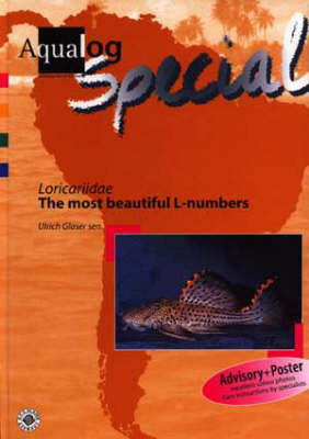 """Aqualog Special - Loricaridae """"The Most Beautiful L-numbers"""""""