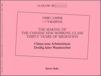 The Making of the Chinese New Working Class: Thirty Years of Migration