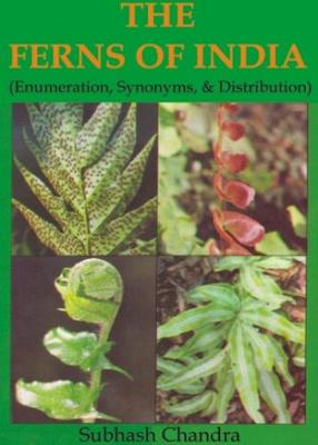 The Ferns of India: Enumeration, Synonyms and Distribution