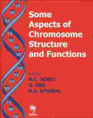 Some Aspects of Chromosome Structure and Functions
