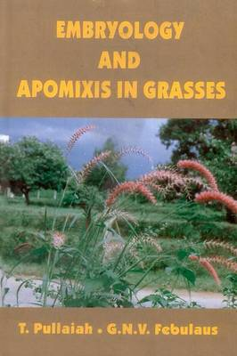 Embryology and Apomixis in Grasses