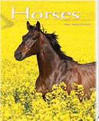 Horses: Pocket Book