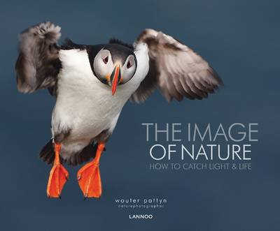 The Image of Nature: How to Catch Light & Life