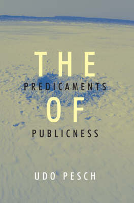 The Predicaments of Publicness: An Inquiry into the Conceptual Ambiguity of Public Administration