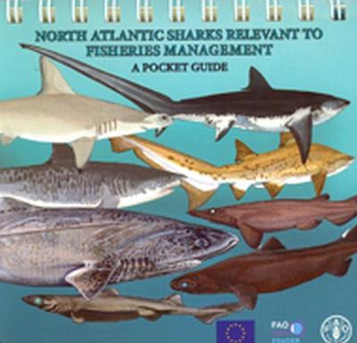 North Atlantic Sharks Relevant to Fisheries Management: A Pocket Guide
