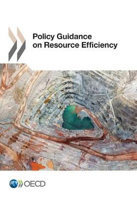 Policy Guidance on Resource Efficiency