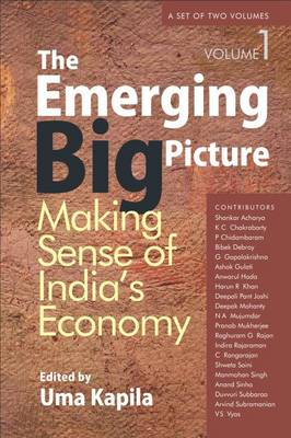 The Emerging Big Picture: Making Sense of India's Economy
