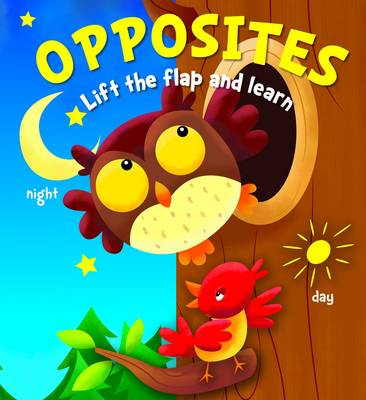 Lift the Flap and Learn: Opposites
