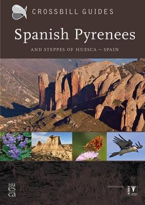 Spanish Pyrenees: And Steppes of Huesca - Spain