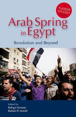 Arab Spring in Egypt: Revolution and Beyond