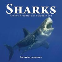 Sharks: Ancient Predators in a Modern...
