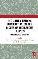 The United Nations Declaration on the...