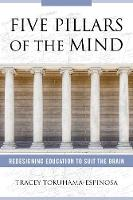 Five Pillars of the Mind: Redesigning...