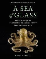 A Sea of Glass: Searching for the...