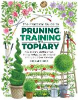 Practical Guide to Pruning, Training...