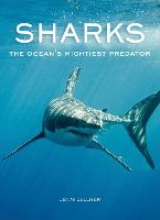 Sharks: The Ocean's Mightiest Predator