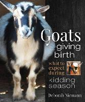 Goats Giving Birth: What to Expect...