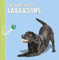 Fast Facts About Labradors