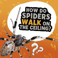 How Do Spiders Walk on the Ceiling?