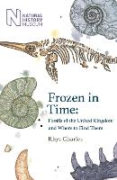 Frozen in Time: Fossils of Great...