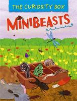 The Curiosity Box: Minibeasts
