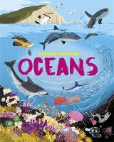 The Big Picture: Oceans