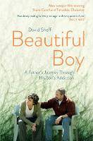 Beautiful Boy: A Father's Journey...